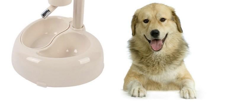 Поилка «Сухие усы» для собак, 2 миски