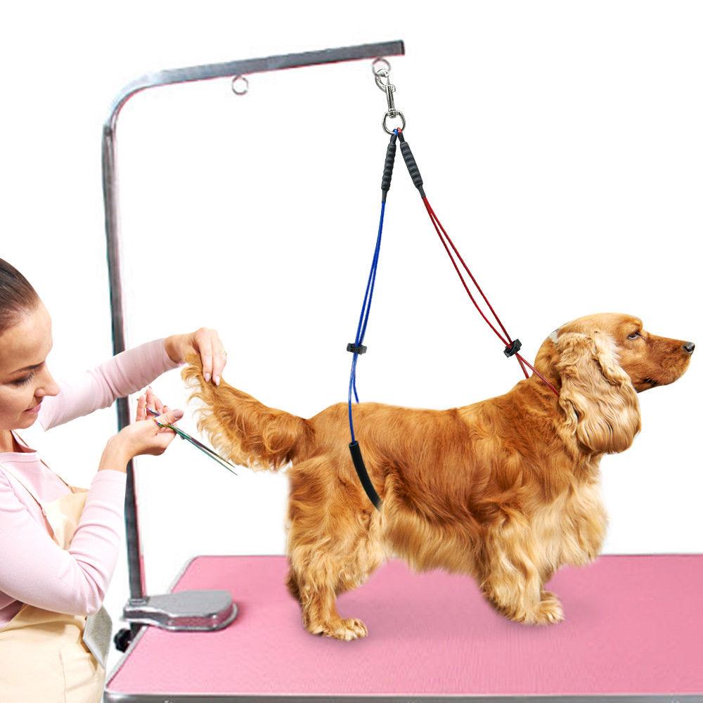 Двойной ремень для удержания собаки 65 / 55 см, красно-синий