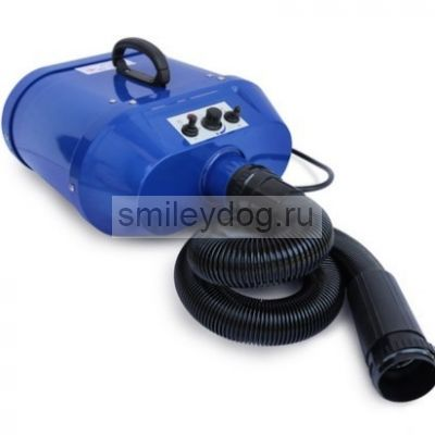 Фен-компрессор Chun Zhou Water Blower A 22-2300W / синий