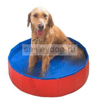 Бассейн для собак Hoopet, 80*20 см, красно-синий